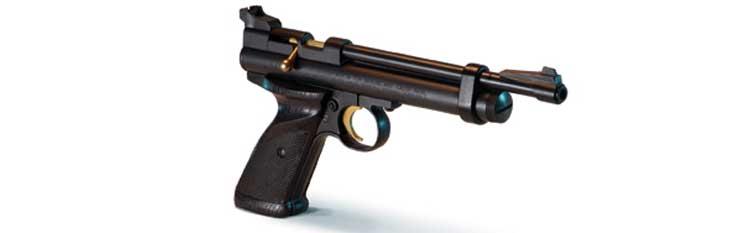 Crosman model 2240 (Ratbuster) CO2 pistol